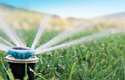 Irrigation Contractor